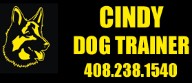 Cindy Gehring IACP Certified Dog Trainer